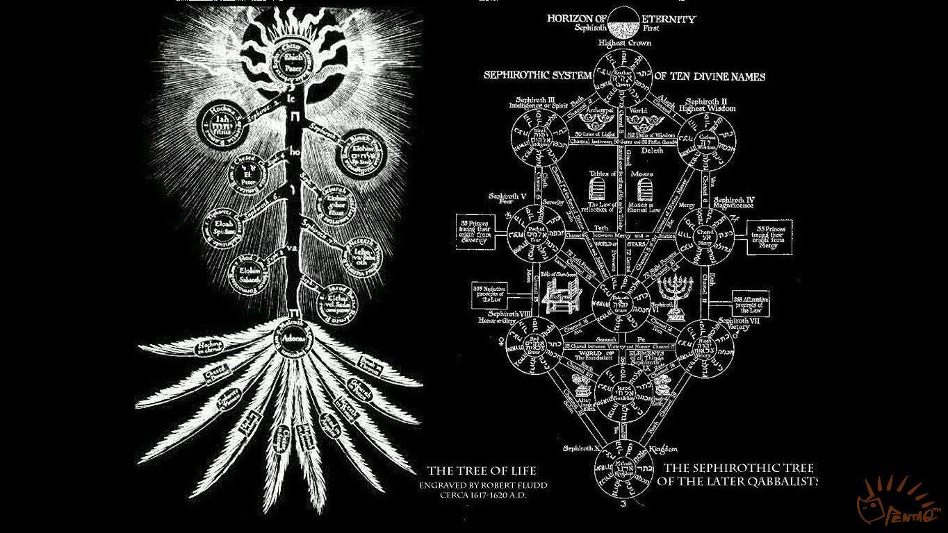 4.3.2.左右对照的生命之树(王老师念右边的树的名字时配的).jpg